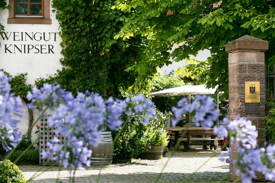 Knipser Weingut Pfalz