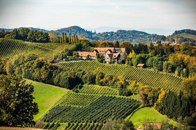 Sattlerhof Gamlitz | Wein Südsteiermark