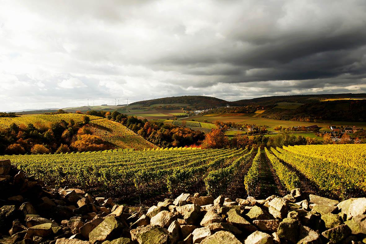 Steitz Wein Berge